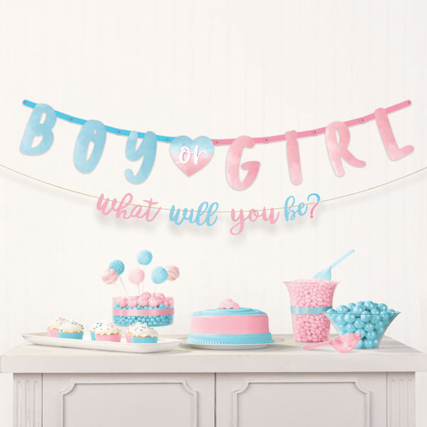Banner 'Boy or Girl' og 'what will you be?'